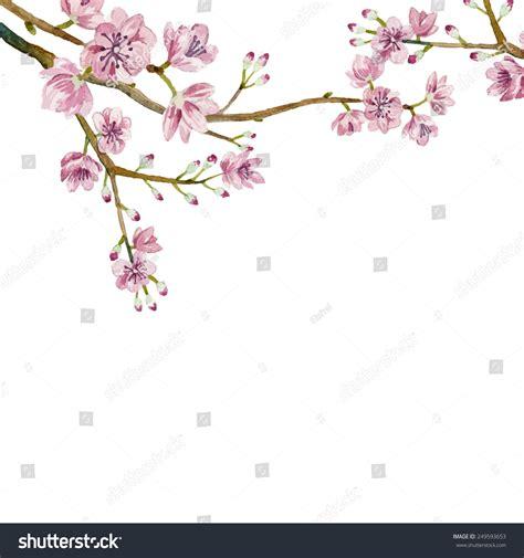 Watercolor Sakura Frame Background Blossom Cherry Stock