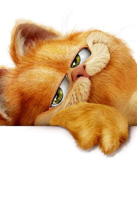 garfield  love  picture cats meow