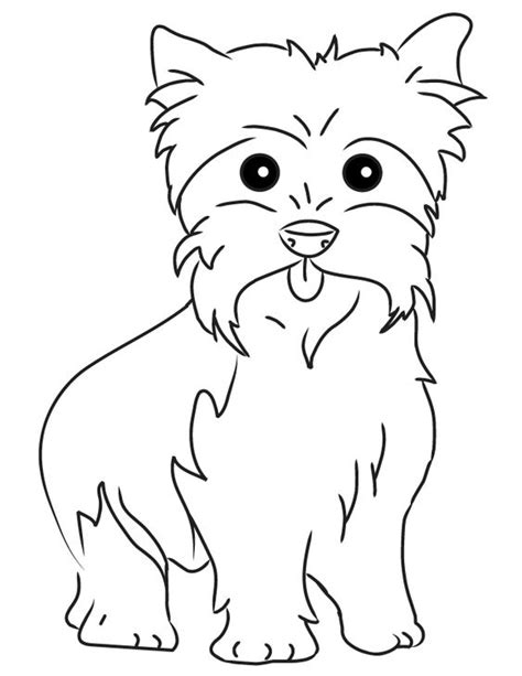yorkie coloring page coloring  pinterest coloring