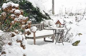 Sind Hortensien Winterhart : sind hortensien winterhart diese sorten ja ~ Orissabook.com Haus und Dekorationen