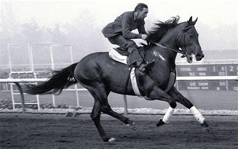 citation horse triple crown winner horses santa anita derby winners 1950 kentucky racehorses racing race 1948 racehorse working male usa