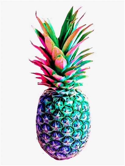 Pineapple Colorful Clipart Rainbow Coloured 1132 Animated