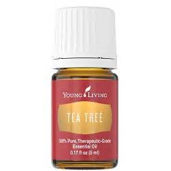 Photos of Young Living Tea Tree Oil