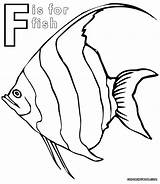 Coloring Fish Pages Butterfly Angelfish Printable Sheet Print Getcolorings Animal sketch template