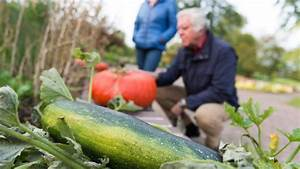 Garten Im September : garten im september das ist zu tun rasen m hen und zwiebeln setzen ~ Whattoseeinmadrid.com Haus und Dekorationen