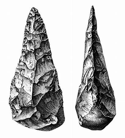 Tools Native Stone American Acheulean Artifacts Macroevolution