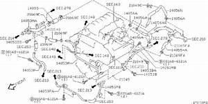 Nissan Pathfinder Engine Coolant Hose