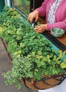 Blumen Für Schattigen Balkon : die besten 25 landwirtschaft ideen auf pinterest rinderfarm schafrassen und rinderhaltung ~ Frokenaadalensverden.com Haus und Dekorationen