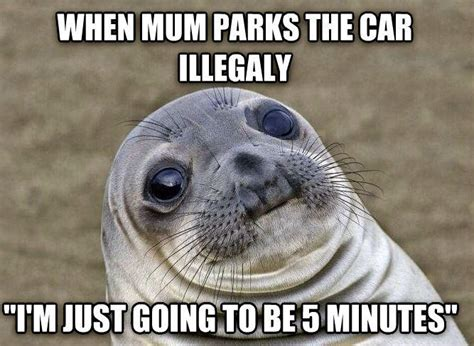 Seal Memes - awkward moment seal know your meme