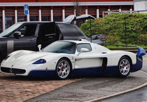 Pulisce Maserati Con Un Cane
