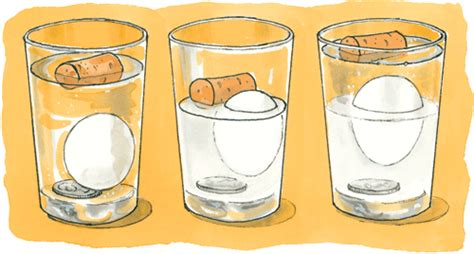 Eggs That Sink In Water by Sink And Float Clipart 19