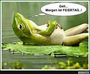 Frosch Bilder Lustig : geil morgen ist feiertag lustige bilder spr che witze echt lustig sonntag pinterest ~ Whattoseeinmadrid.com Haus und Dekorationen