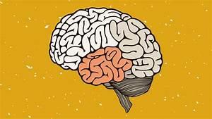 Want A Memory Like Sherlock Holmes  Learn To Build A Mind Palace