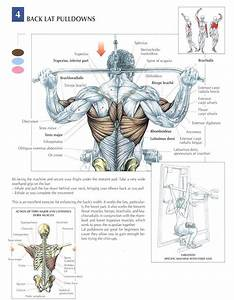 5 Tips For Building Muscle
