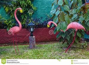 Flamant Rose Jardin : deux flamants roses dans un des jardins des cara bes ~ Teatrodelosmanantiales.com Idées de Décoration