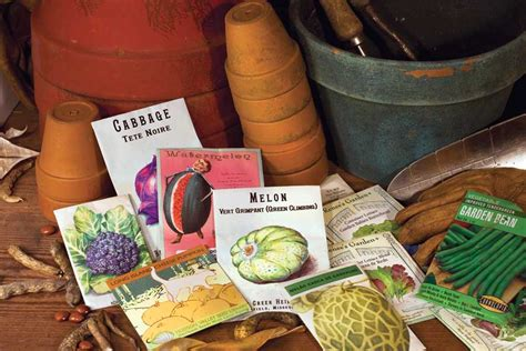 best vegetable seed companies organic gardening