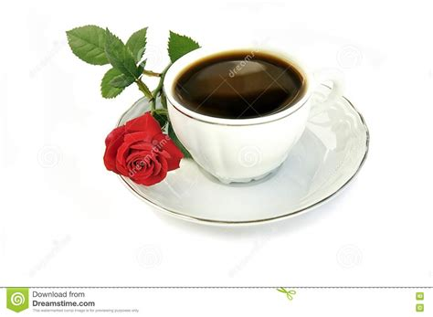 Cup Of Coffee And Small Red Rose. Stock Image Starbucks Coffee Espresso Roast Cancer Irish Tia Maria Coffees Names Mumbai Maharashtra At Hot Which Are Fair Trade India Price