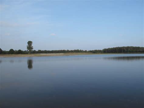 de maasduinen national park wikiwand
