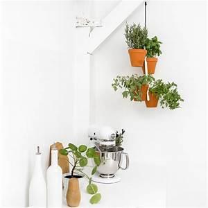 Kräutertöpfe In Der Küche : plant hanger blumen und kr uter ~ Michelbontemps.com Haus und Dekorationen