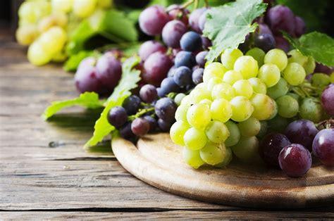 prezzo uva da tavola folpet anche su uva da tavola agronotizie difesa e diserbo