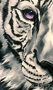 Sapphire Tiger on Behance