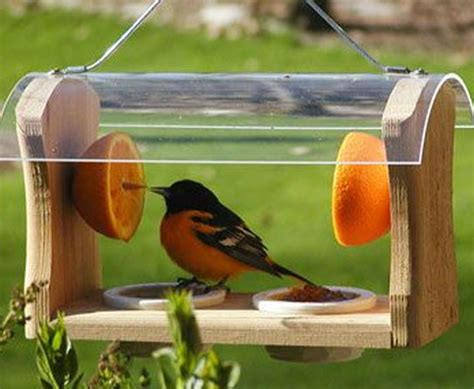 garden attractive  decorative bird feeders