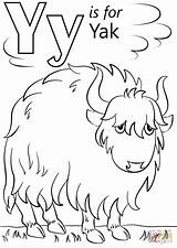 Yak Letter Coloring Pages Cartoon Printable Alphabet Letters Crafts Preschool Sheets Outline Pluspng Supercoloring Yellow Super Dot Animal Template Animals sketch template