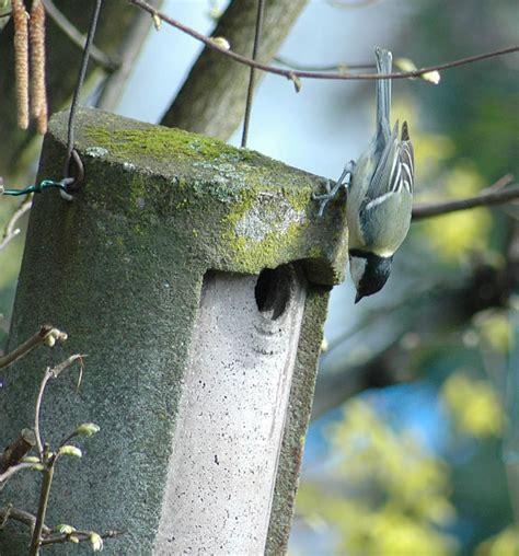 Jemand Zu Hause by Hallo Ist Jemand Zu Hause Foto Bild Tiere Wildlife