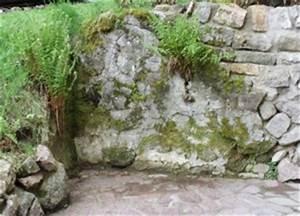 Steine Für Gartenmauer : steine f r garten gartenmauer kaufen ~ Michelbontemps.com Haus und Dekorationen