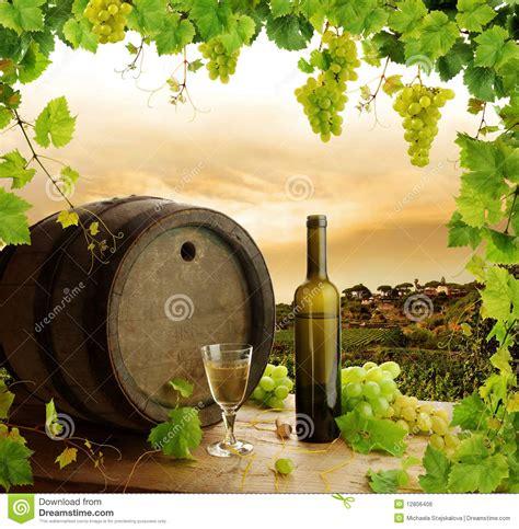 wine  life  vineyard royalty  stock image