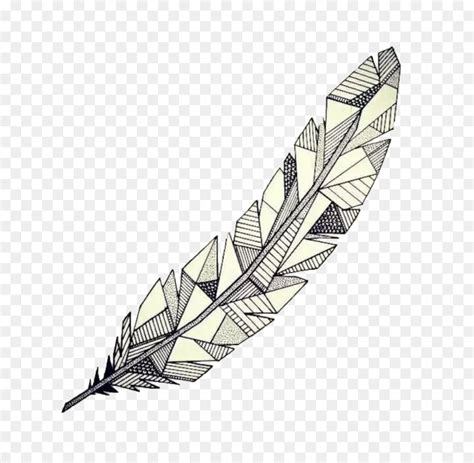 drawing feather geometry watercolor painting sketch hand