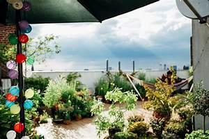 Pflanzen Für Dachterrasse : dachterrasse versch nern leicht umsetzbare kreative ideen ~ Michelbontemps.com Haus und Dekorationen