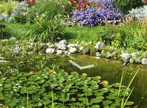 Gartenteich Tipps Fuer Die Pflege by Gartenteich Pflegen Tipps F 252 R Den Sommer Pflege Tipps