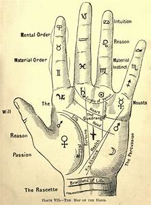 Palmistry Pictures