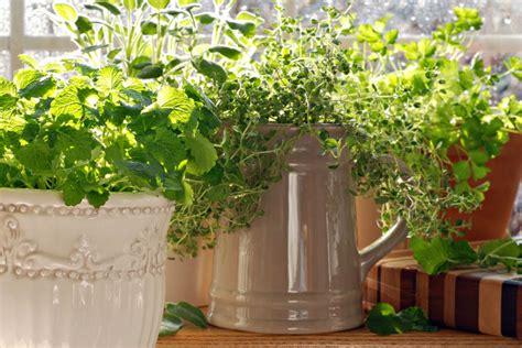 Growing An Indoor Herb Garden-unlock Food
