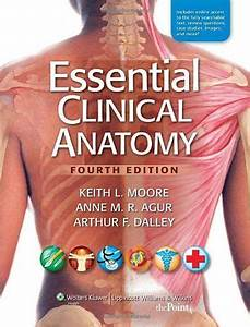 12 Best Anatomy Survival Guide Images On Pinterest