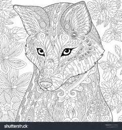 Fox Wild Animal Coloring Pages for Adults