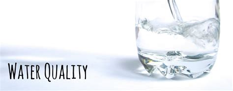 Whatcom Water Quality