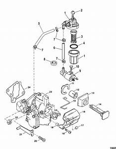 Mariner 25 Hp  2 Cylinder  Fuel System Components
