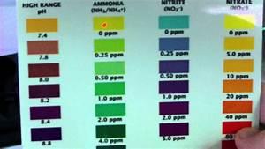 Api Ph Test Color Chart Aquarium Water Test Chart 1000 Aquarium Ideas