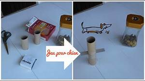 Video Pour Chien : cr er un jeu pour chien homemade dog toy diy r cup 39 youtube ~ Medecine-chirurgie-esthetiques.com Avis de Voitures