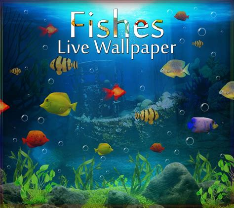3d Animated Fish Wallpaper - animated wallpaper fish top backgrounds wallpapers