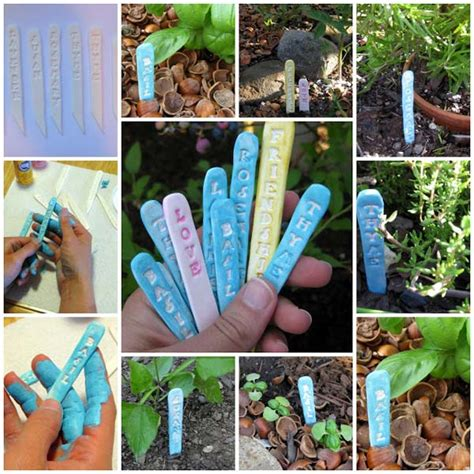 cute   money ideas  label  garden plants