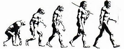 Evolution Chart Transparent Monday Creationism Morning Edition