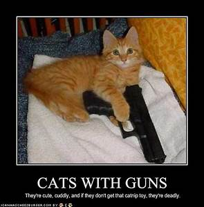 Funny Animals with Guns-2012 Most Funny Wallpapers   Funny ...
