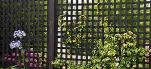 Treillage Plante Grimpante : treillage bois pour plantes grimpantes castorama car wallpaper ~ Dode.kayakingforconservation.com Idées de Décoration