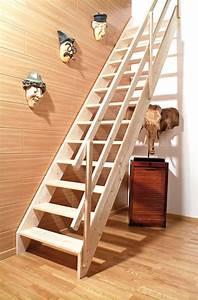 Echelle D Escalier : drole de buzz actu buzz ~ Premium-room.com Idées de Décoration