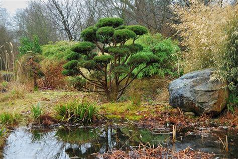 Japanischer Garten Tremsbüttel japanischer garten schloss tremsb 252 ttel foto bild