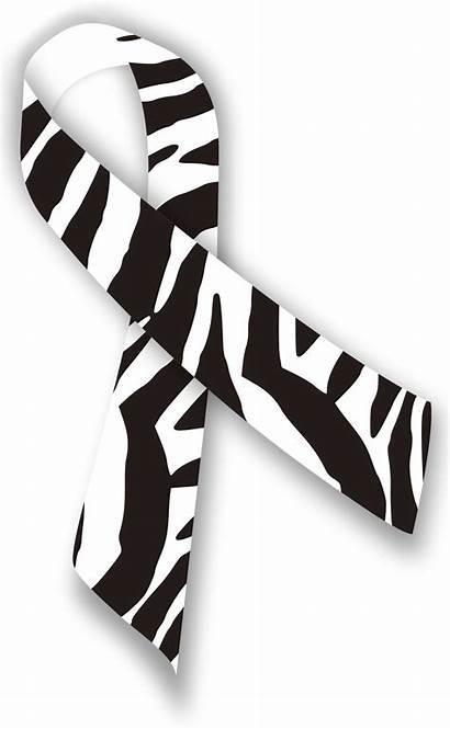 Ribbon Svg Zebra Wikipedia Wiki