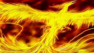 Cool Phoenix Bird Wallpaper - beauty walpaper